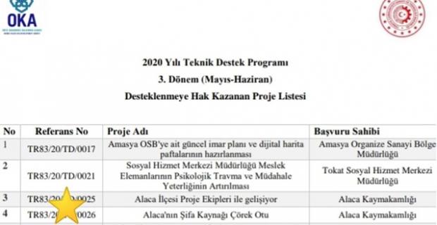 OKA'ya sunulan Alaca'nın projesi kabul edildi