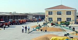 Toplanma alanları buğday pazarı oldu