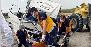 Alaca'da hayvan taşıyan kamyon kaza yaptı