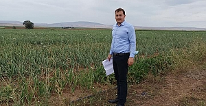 Ekili arazilerin kontrolleri sürüyor