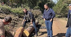 Alaca Orman İşletme sahaları incelendi