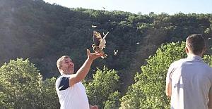 Avcılar Kulübü tarafından doğaya keklik salındı